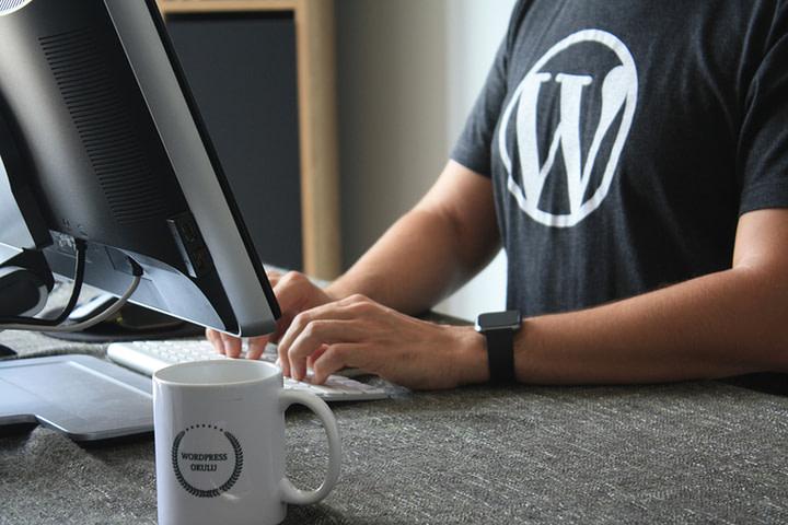 WordPress Tee